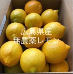 "Thumbnail of ""国産  レモン  広島県産 無農薬 レモン 瀬戸内レモン 2.5kg"""