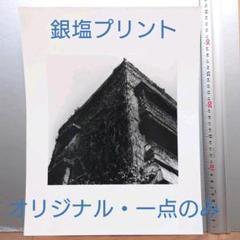 "Thumbnail of ""銀塩プリント・一点のみ 井上治(Osamu Inoue)フォトアート作品 静物"""