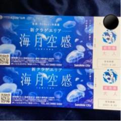 "Thumbnail of ""サンシャイン水族館 チケット 2枚セット"""