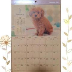 "Thumbnail of ""2021年カレンダー イヌカレンダー B4クラフト 犬 癒し系"""
