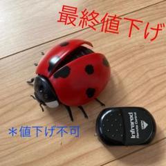 """Thumbnail of """"てんとう虫  赤外線  リモコン  ラジコン"""""""