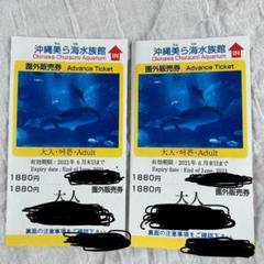 "Thumbnail of ""美ら海水族館 大人 チケット2枚"""