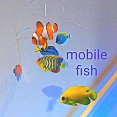 "Thumbnail of ""#熱帯魚 モビール 魚 幸運  水槽 モンテッソーリ におすすめ"""