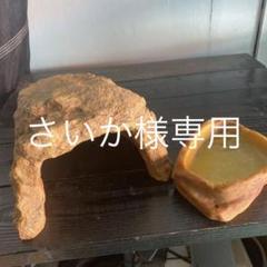 """Thumbnail of """"ロックシェルター、餌入れ"""""""