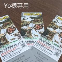 "Thumbnail of ""大地のハンター展 国立科学博物館 3枚セット"""