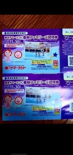 "Thumbnail of ""日付延長!最終値下げ!2021年7月16日まで使えます!東京サマーランド"""