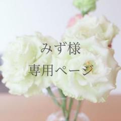 "Thumbnail of ""【みず様専用】"""