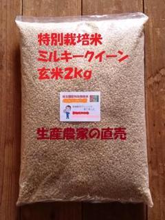 "Thumbnail of ""★新米★[玄米]特別栽培米ミルキークイーン2kg有機肥料減農薬栽培"""