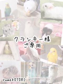 "Thumbnail of ""クランキー様ご専用 小鳥のブランコ♪"""