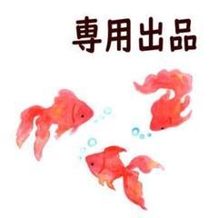 """Thumbnail of """"水玉 フリル ペット 首輪 鈴 長さ調節可能 ブルー ・bs3"""""""