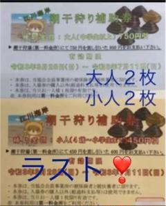 "Thumbnail of ""江川海岸 木更津 潮干狩り 補助券 大人2枚 小人2枚"""