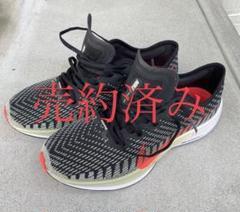 Nike ペガサスターボ2