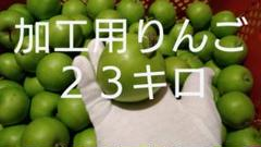 "Thumbnail of ""加工用摘果りんご23キロ⑦"""