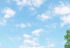"Thumbnail of ""柴様 専用となります☆*"""