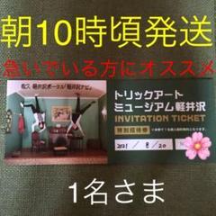 "Thumbnail of ""トリックアートミュージアム軽井沢 1名様"""