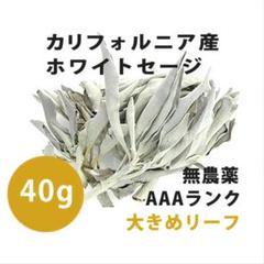 """Thumbnail of """"【無農薬】ホワイトセージ  高品質40g 解説マニュアル&チャック付きポリ袋"""""""