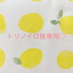 "Thumbnail of ""【トリノイロ様専用】バードテントNo.31 檸檬"""