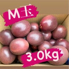 "Thumbnail of ""M玉3kg +規格外500g"""