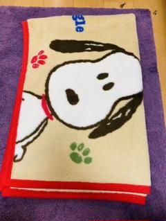 "Thumbnail of ""西川 SNOOPY毛布布団"""