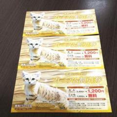 "Thumbnail of ""値下げ!6600円お得!那須どうぶつ王国、割引きチケット3枚"""