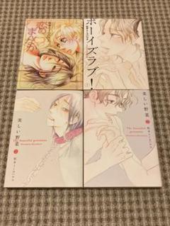 "Thumbnail of ""松本ミーコハウス 4冊セット 美しい野菜 ボーイズラブ! 恋のまんなか"""
