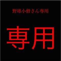 "Thumbnail of ""東海大星翔ベースボールTシャツ"""