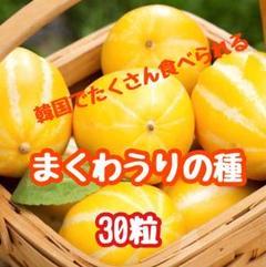 """Thumbnail of """"貴重!チャメ(韓国の瓜)まくわうりの種子30粒⑤"""""""