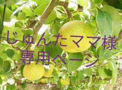"Thumbnail of ""じゅんたママ様専用ページ"""