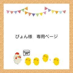"Thumbnail of ""ぴょん様 専用ページ"""