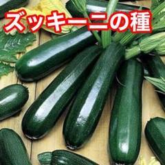 """Thumbnail of """"ベトナム ズッキーニ10粒"""""""