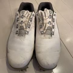 """Thumbnail of """"FOOT JOY フットジョイ 53301J  ゴルフシューズ 27.5cm"""""""