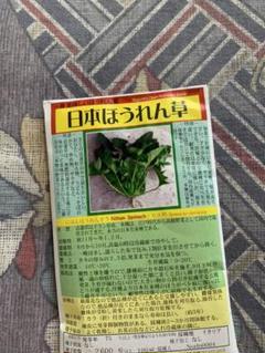 """Thumbnail of """"安心 安全 野口のタネ ほうれん草 無農薬 オーガニック"""""""