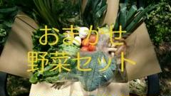 "Thumbnail of ""おまかせ野菜セット"""