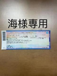 "Thumbnail of ""ジャイガチケット 海様専用"""