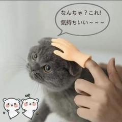"""Thumbnail of """"ペット用 犬 猫 おもちゃ マッサージ 手 ミニチュア 小動物 撮影"""""""