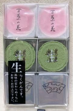 "Thumbnail of ""加賀宝生・万葉の花・濃茶落雁 和菓子"""