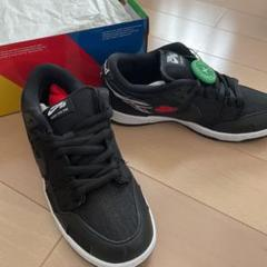 "Thumbnail of ""ナイキ SB DUNK LOW Wasted Youth"""