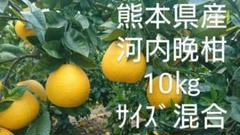 "Thumbnail of ""熊本県産 河内晚柑 サイズ混合10㎏"""