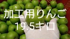 "Thumbnail of ""加工用りんご19.5キロ⑨"""
