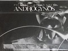 "Thumbnail of ""【新品】ANDROGYNOS (PIERROT X DIR EN GREY)"""