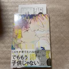 """Thumbnail of """"ふれないでリトルスター  マミタ BL マンガ コミック ボーイズラブ"""""""