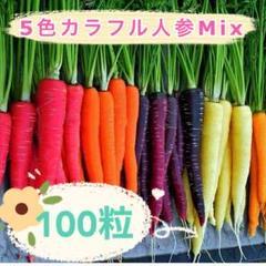 "Thumbnail of ""⭐︎カラフル人参Mix 100粒330円 赤、紫、黄、白、橙 5色8種ニンジンの種"""