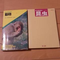 """Thumbnail of """"動物 昆虫"""""""