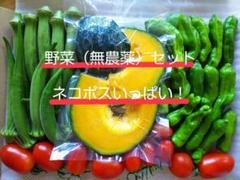"Thumbnail of ""野菜(無農薬)セット ネコポス"""