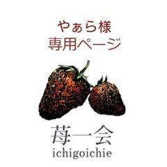 "Thumbnail of ""やぁら様 専用ページ★"""