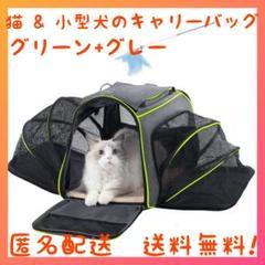 "Thumbnail of ""猫 & 小型犬のキャリーバッグ  グリーン+グレー"""