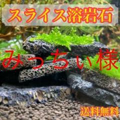 "Thumbnail of ""水草の活着に スライス溶岩石 ウィローストーン 10枚"""