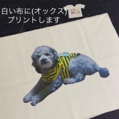 """Thumbnail of """"ハンドメイド用 愛犬など、布にプリントします(A4サイズ)"""""""