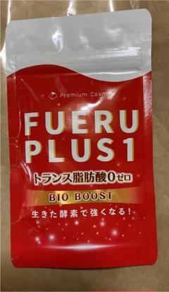 """Thumbnail of """"FUERU PLUS1"""""""