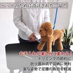 "Thumbnail of ""プロが愛用する実用レベル♪❤高級トリミングシザー付属⭐トリミングテーブル"""